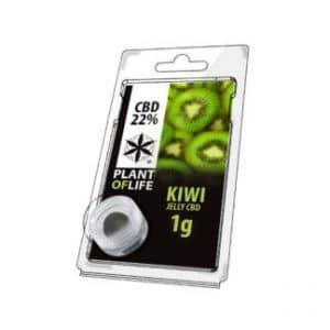 Kiwi   Plant of Life