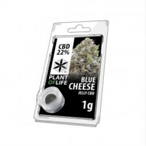 Blue Cheese   Plant of Life